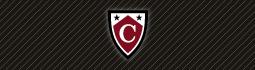 Image of Capella University logo